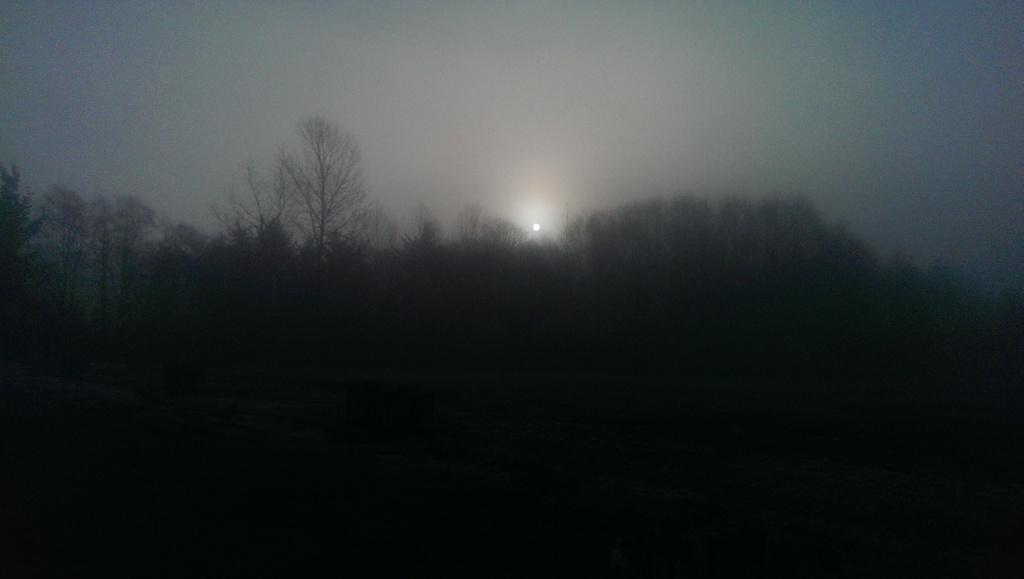 Sun in the fog